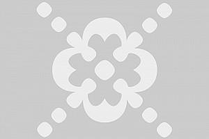 Quiz Pro 1.4 Released
