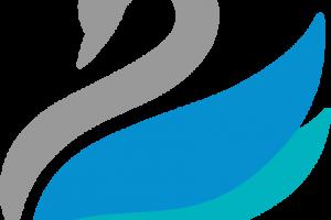 Abhinav Software is Now Vedanta Software